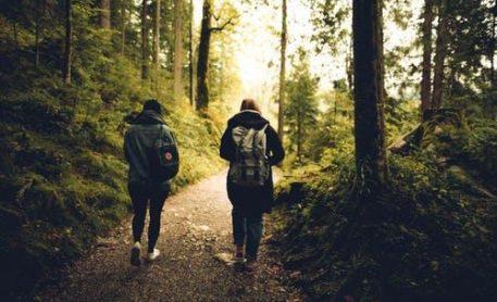 3. Walking